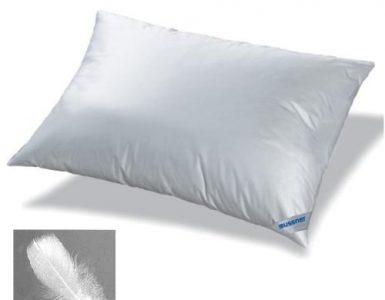 cuscino in piuma